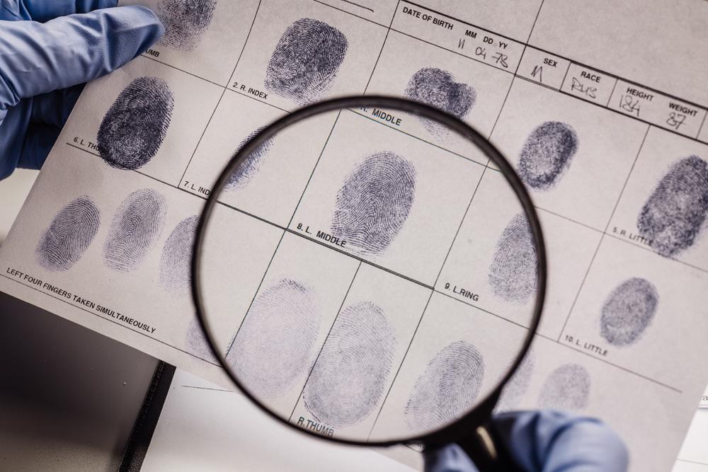 Mit der Wissenschaft auf Verbrecherjagd